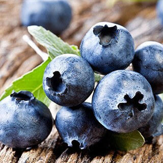 Blueberries deal breast cancer tumors in mice a serious blow